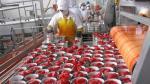 Exportaciones no tradicionales de Perú a la Unión Europea crecieron 8% - Noticias de irene mercado