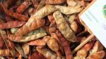 Adex: Ajuste de Ley Forestal incrementará exportación de tara - Noticias de fauna silvestre