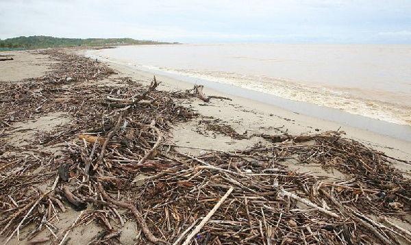 Punta Sal: ahora sus mayores visitantes son los huaicos - Noticias de fenómeno el niño
