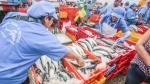 Produce: Consumo per cápita de pescado a nivel nacional creció de 10 a 12.3 kilos - Noticias de consumidor peruano