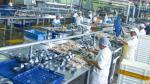 Manufactura experimenta recuperación gradual alentada por sector pesca, dice Olaechea - Noticias de sector construccion