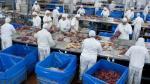 Gigante cárnico brasileño JBS vende hacienda ganadera en Canadá - Noticias de jbs