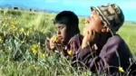 Cine peruano: Provincias produjeron más películas que Lima en últimos 20 años - Noticias de remakes
