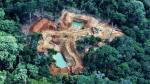 Perú perdió 164,662 hectáreas de bosques húmedos amazónicos por deforestación - Noticias de tala ilegal